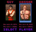Final Fight Guy (6).png