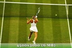 http://img-fotki.yandex.ru/get/9799/14186792.3a/0_d9776_761d1ec4_orig.jpg