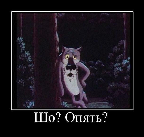 0_fb31f_a8683f61_XL.jpg
