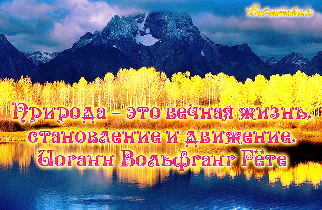 Цитаты великих людей - Сила природы, Красота природы – Природа — это вечная жизнь...