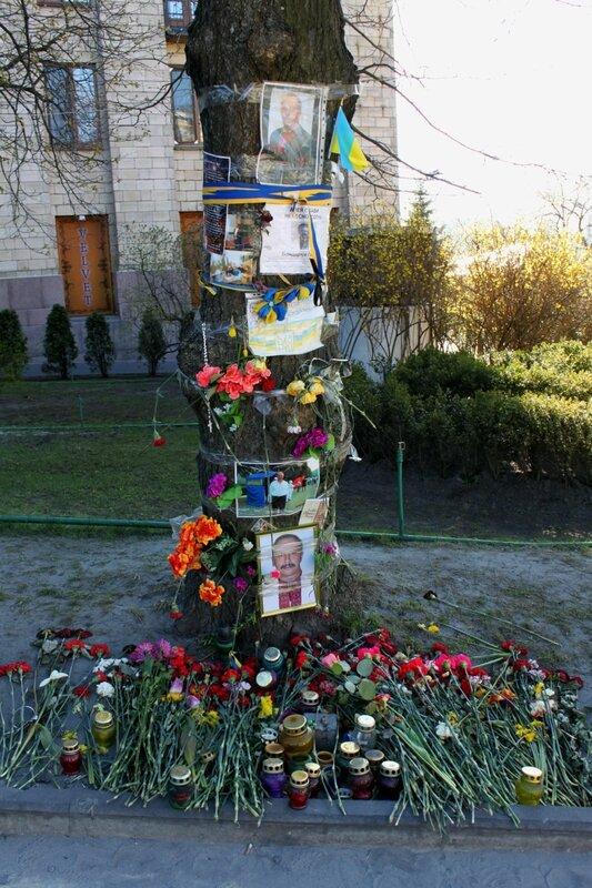 Мемориальное дерево на Институтской
