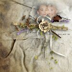 Scrap set   Dried lavender