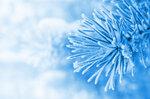 Winter (6).jpg