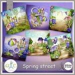 AD_Spring_street_Album.jpg