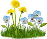 Flora ClipArt 117.png