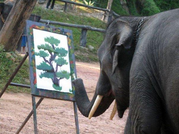 слон использует хобот