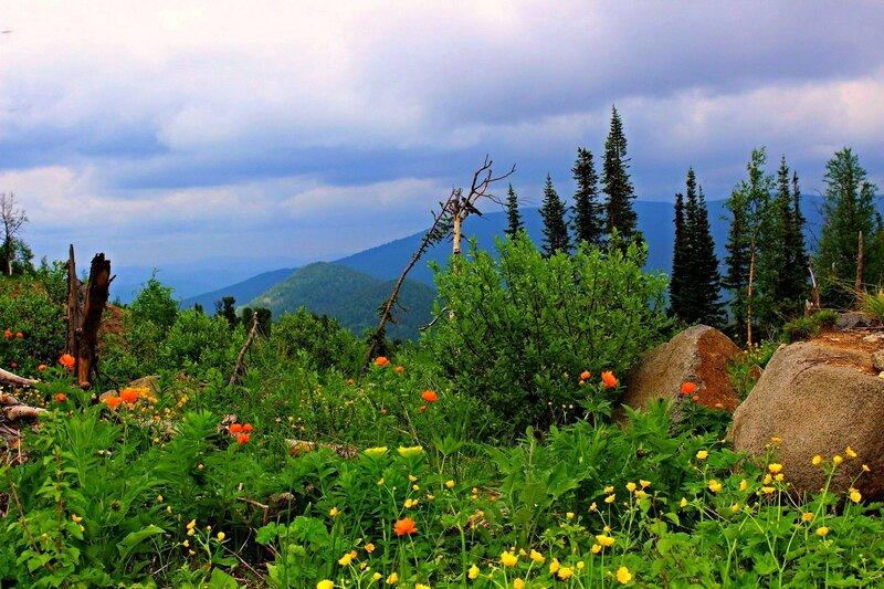 В горах июнь