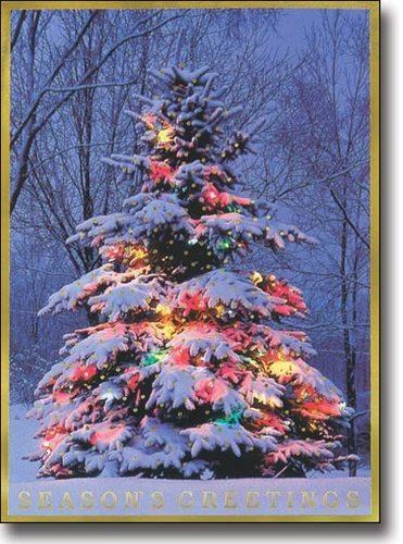 С Новым годом! Ель в гирляндах покрыта снегом