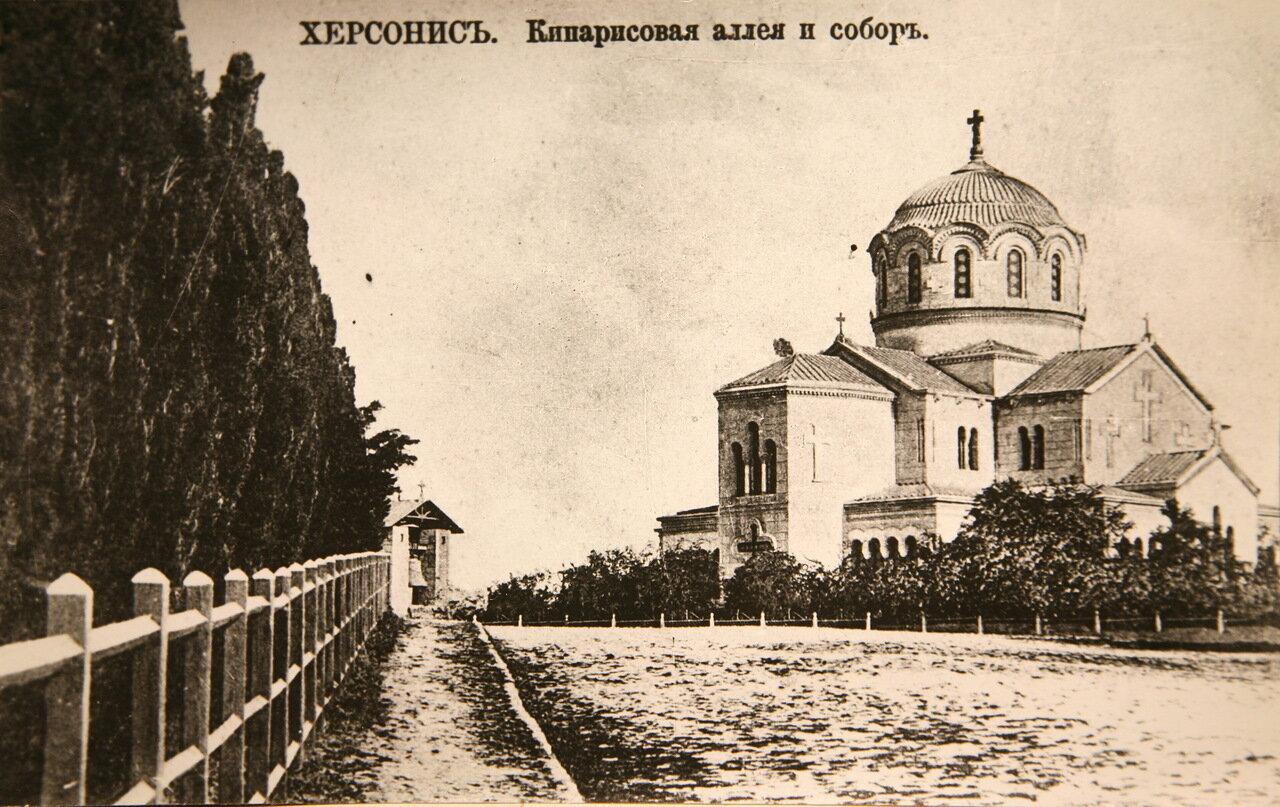Окрестности Севастополя. Херсонес. Кипарисовая аллея