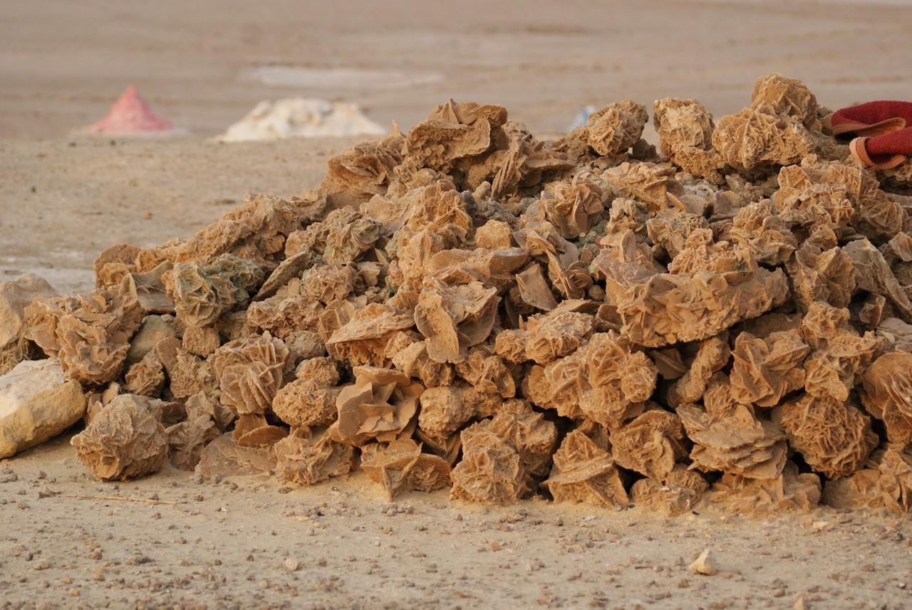 Роза пустыни пустыни», песка, «роза, гипса, других, странах, возникает, сростки, много, Египте, «Роза, песок, поверхности, формы, кристалла, камни, некоторых, кристаллов, пустыня, например