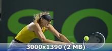 http://img-fotki.yandex.ru/get/9801/247322501.39/0_16befd_fc17480c_orig.jpg