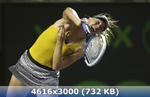 http://img-fotki.yandex.ru/get/9801/247322501.3b/0_16ce7b_bfbf9d10_orig.jpg