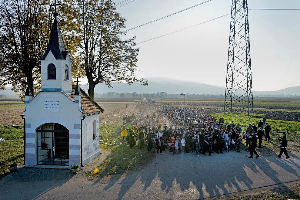 3. Граница Хорватии и Словении, 23 октября 2015. (Фото Darko Bandic):