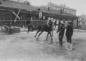 Демонстрация рубки каната на полном скаку во время конных состязаний в бригаде на плацу.
