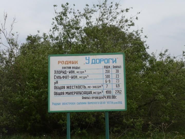 Родники Нижнекамского района РТ