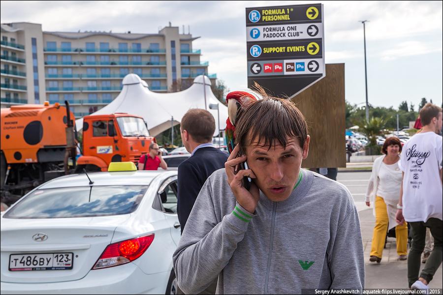 фотографы-живодеры в Сочи