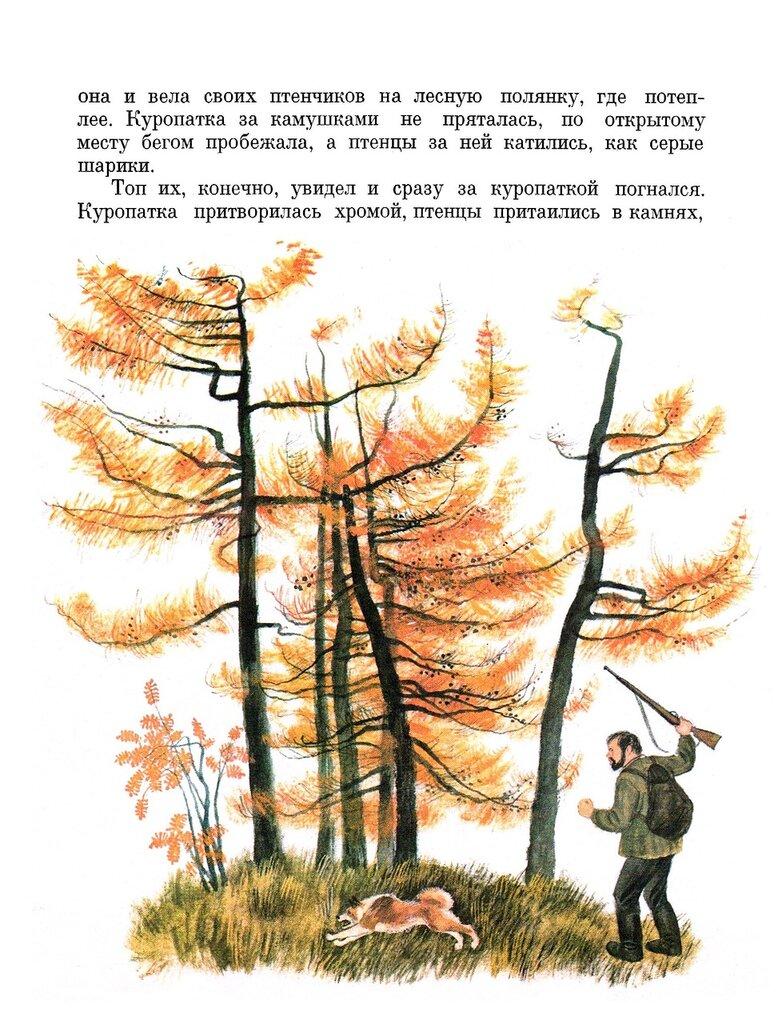 Гснегирев кто сажает лес 67