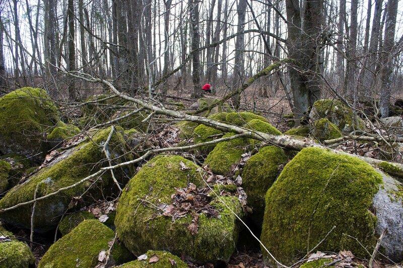 кладбище в урочище Каменные поляны