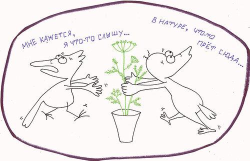 http://img-fotki.yandex.ru/get/9801/8566602.e/0_106094_5511ac4f_L.bmp