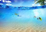 Underwater (1).jpg