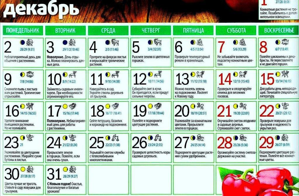 календарь садовода на год:
