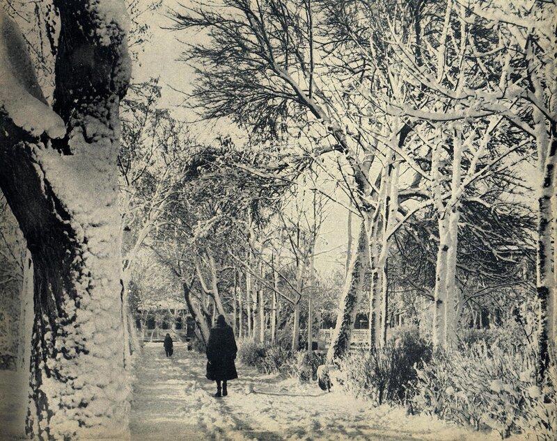 Кишинёв 1964. Парк Пушкина зимой.jpg
