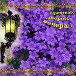 Приятного доброго вечера! Сиреневые цветы, фонарь открытки фото рисунки картинки поздравления