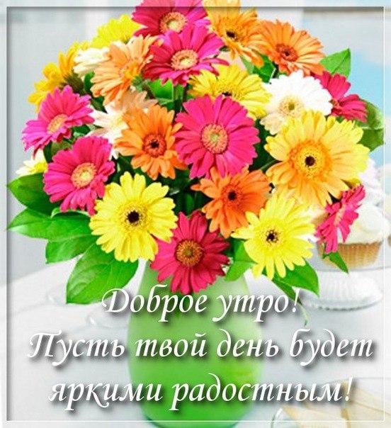 Доброе утро! Пусть день будет ярким и радостным