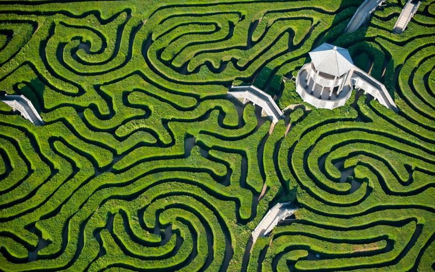 1. Лабиринт Лонглита имеет почти 3 км тропинок и является крупнейшим в Великобритании. С высоты он п