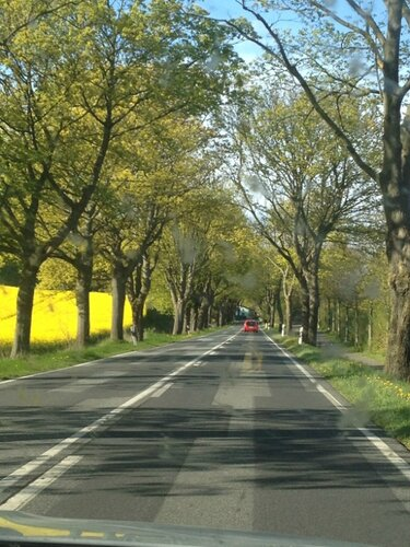 путешествие по германии на автомобиле