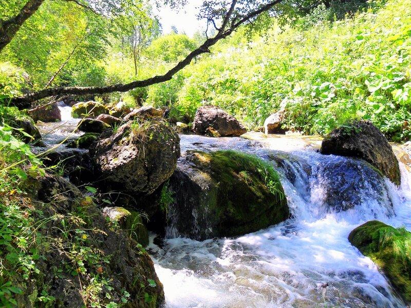 У вод, с горы бегущих