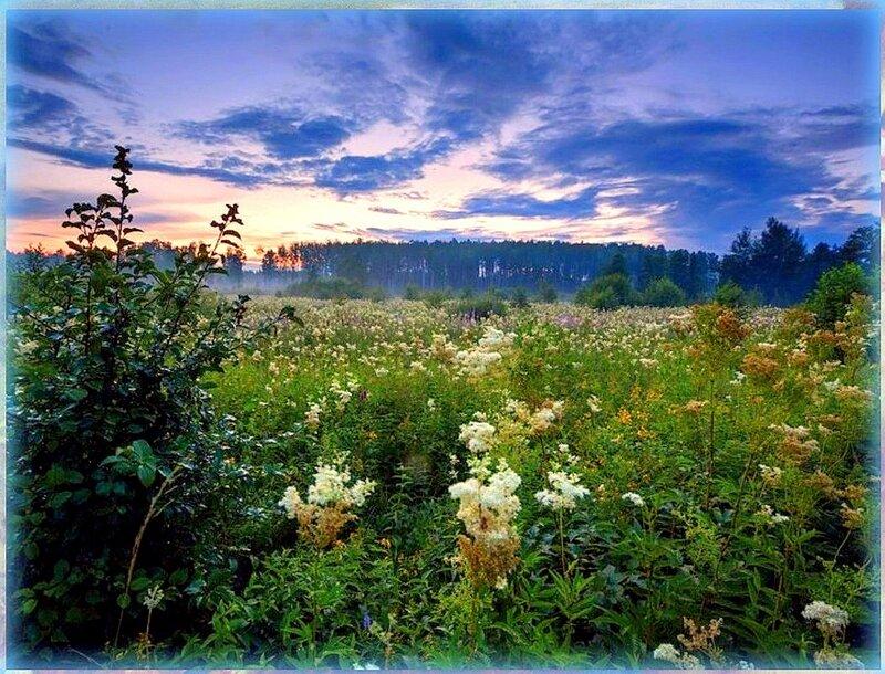 А за лесом дальним уходило Солнце... Природа, пейзаж, фото из интернета (196).jpg