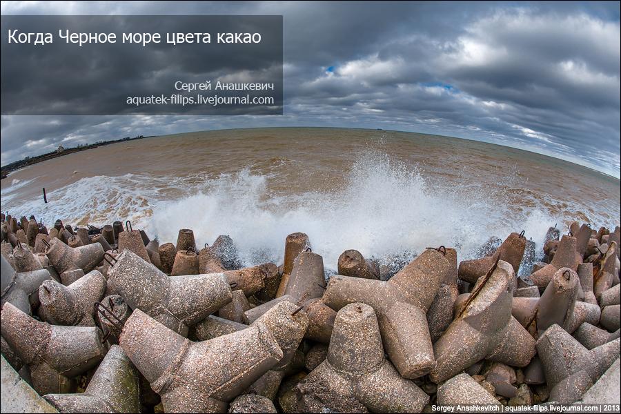 Черное море цвета какао