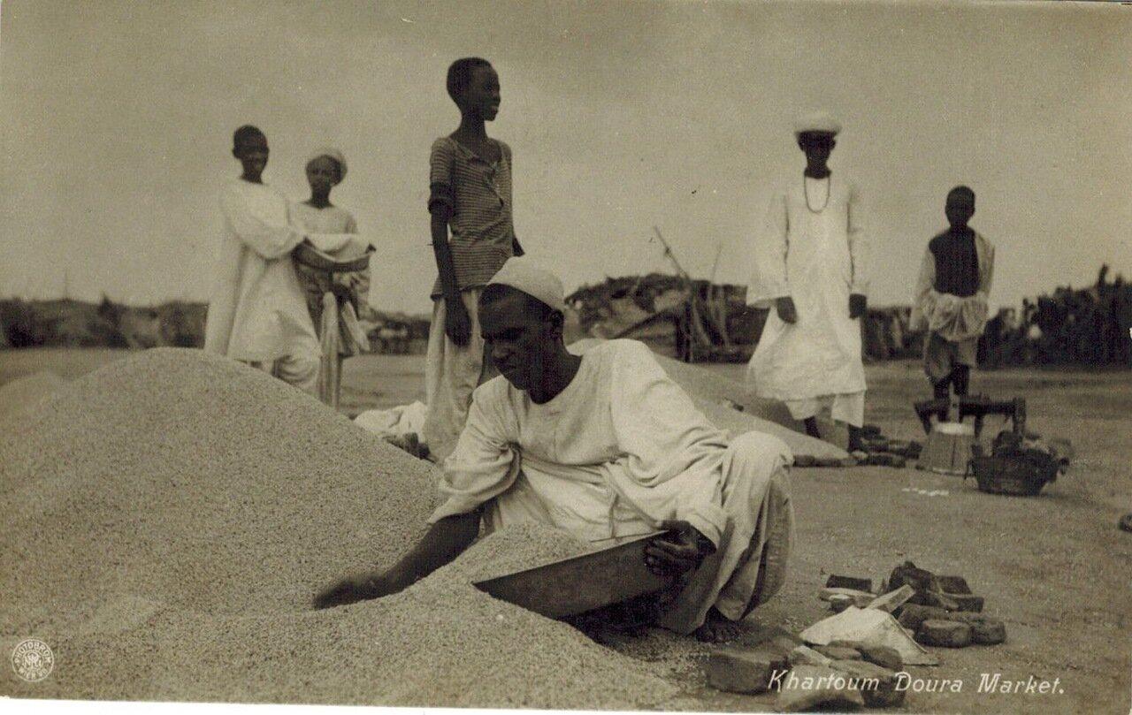 1910. Рынок дурро (хлебное сорго) в Хартуме, Судан