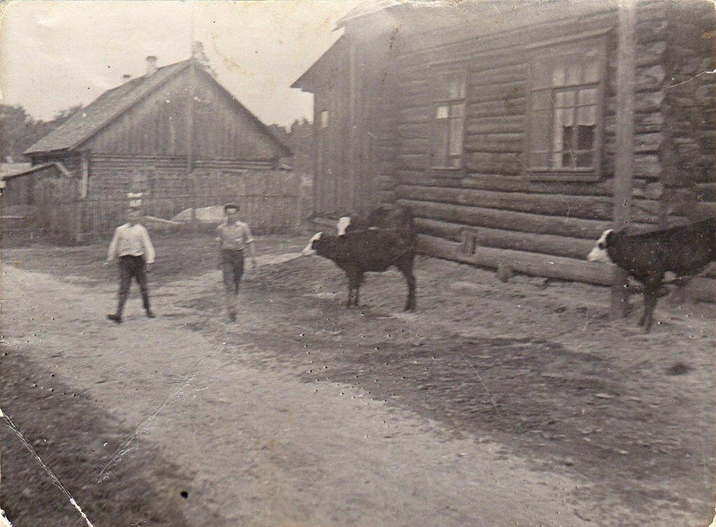 Агутино. Костромская область
