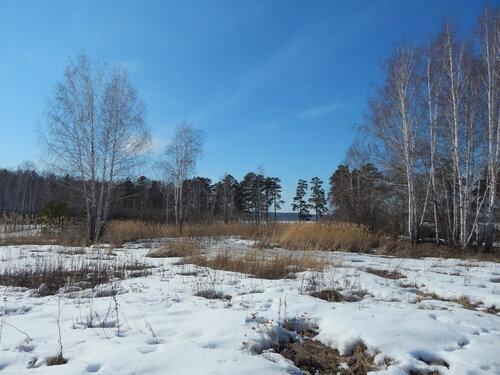 На берегу озера Синара (около города Снежинска в Челябинской области). Автор фотографии - Светлана Грицкова