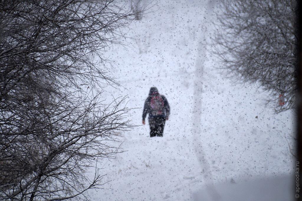 Златоустовский снегопад