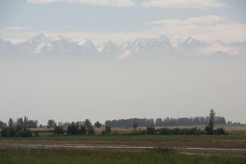 1487. Чуйская долина, Киргизия.JPG