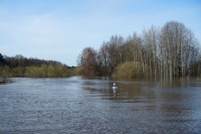 Кораблик с GPS-трекером для измерения скорости течения в разлившихся озёрах на месте русла речки Елховки