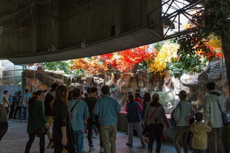 Павильон гигантской панды, Пекинский зоопарк