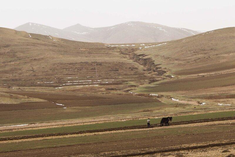 человек пашет на осле в горах внутренней монголии, китай