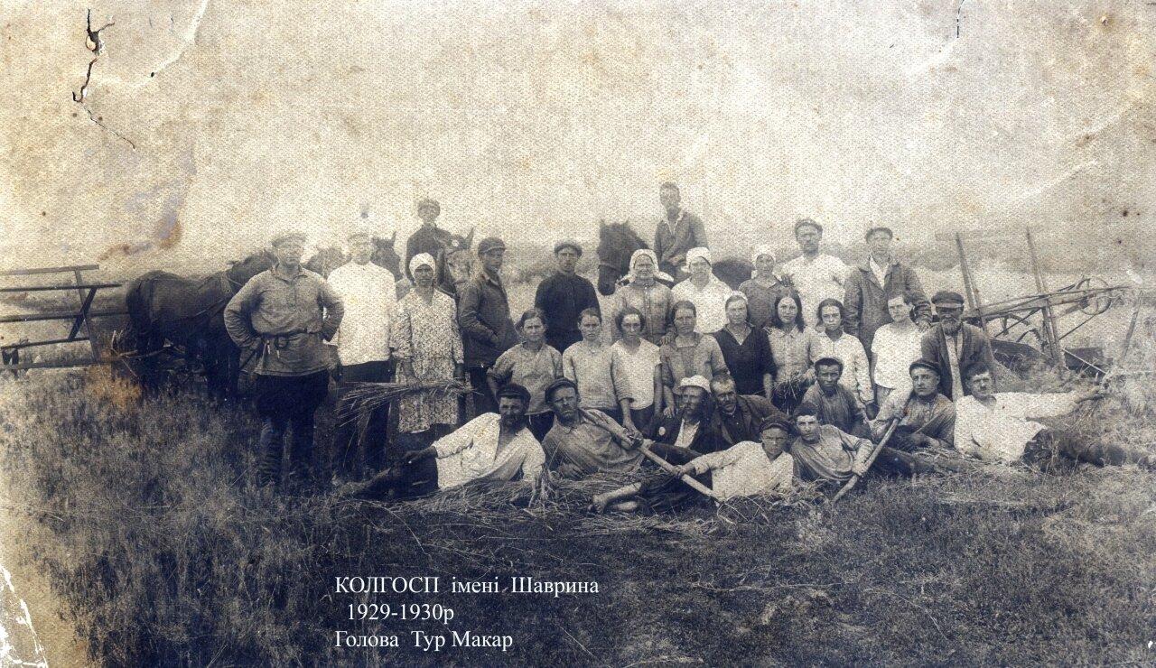 1929-1930. Колхоз им. Шаврина