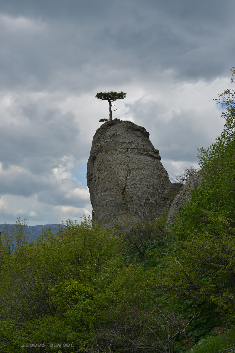 Крым. Демерджи.