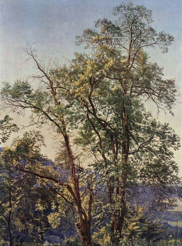 Из собрания шедевров мировой живописи... (557).jpg