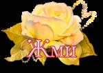 110436335_4360286_d6a8a9dc6ca1_1_.png
