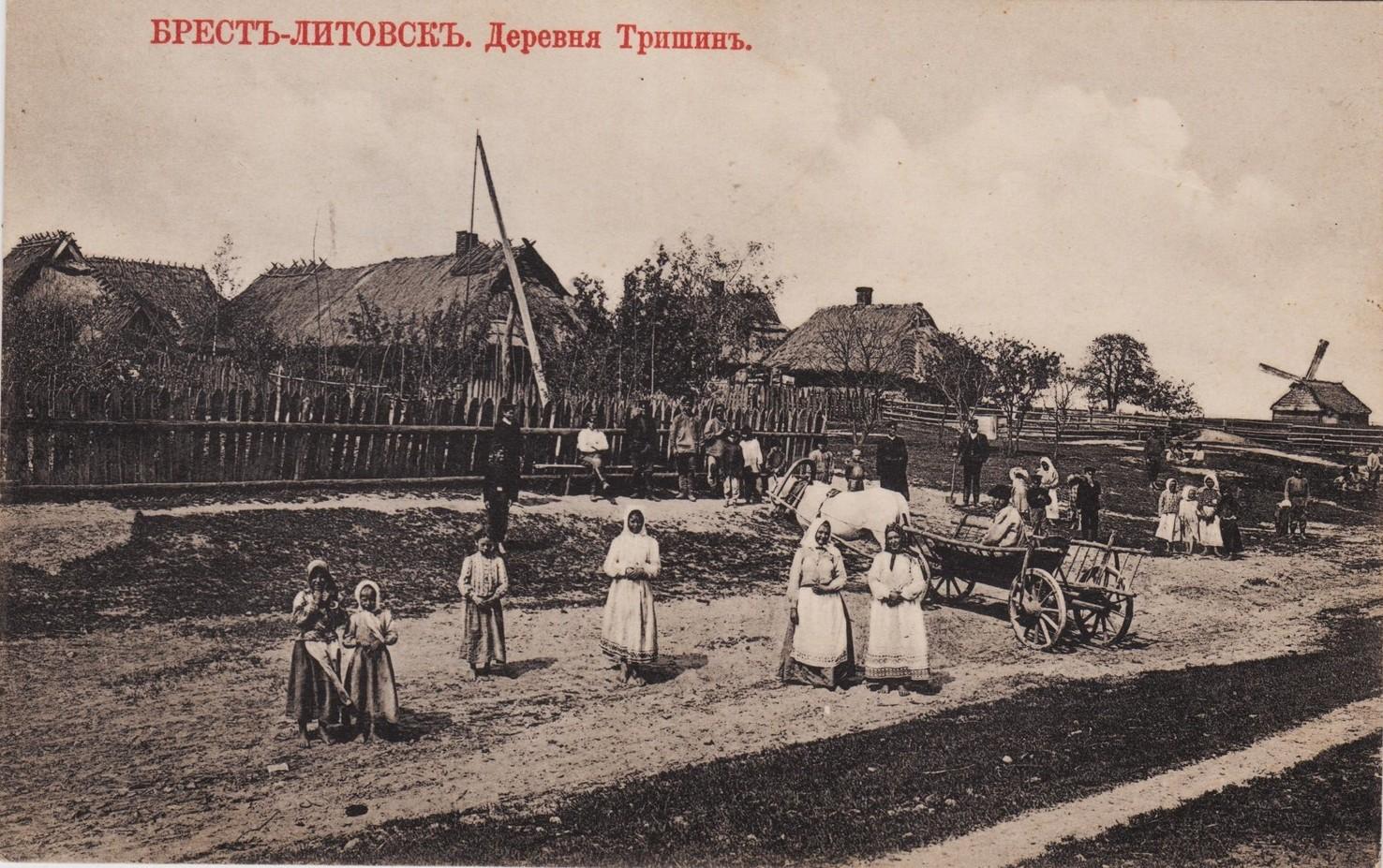 Окрестности Бреста. Деревня Тришин