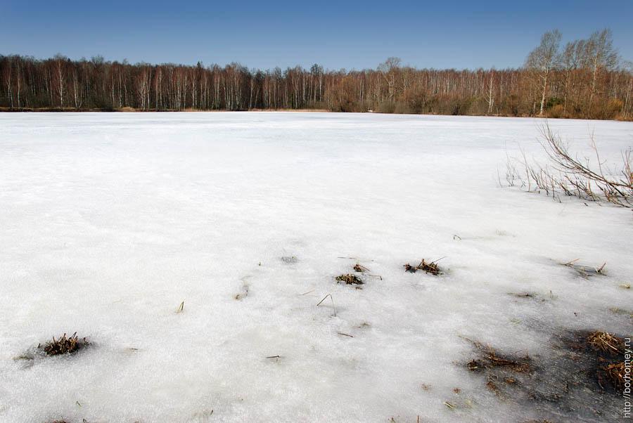 лед держит человека