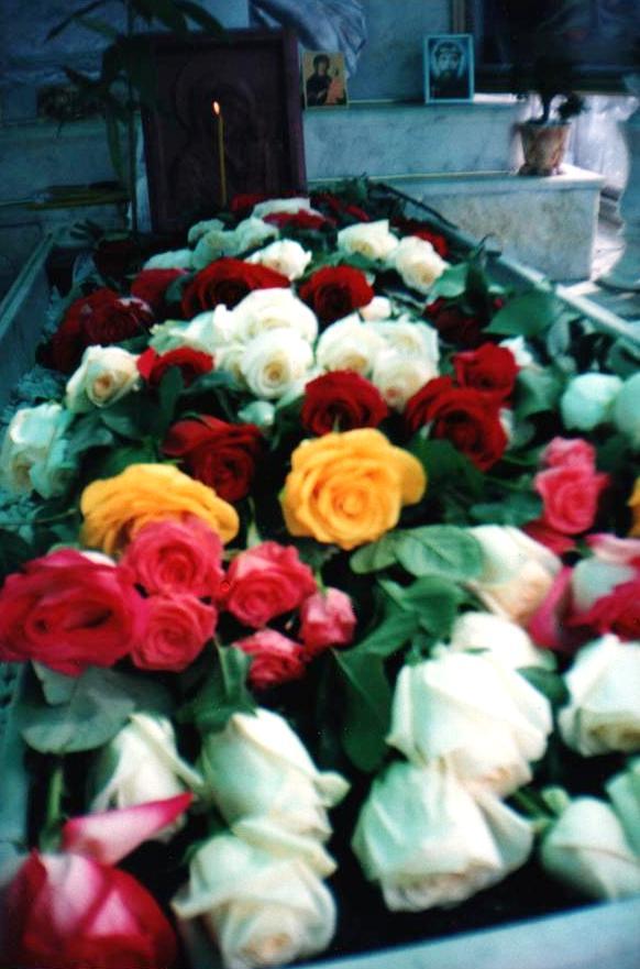 Цветов здесь всегда очень много (29.05.2014)