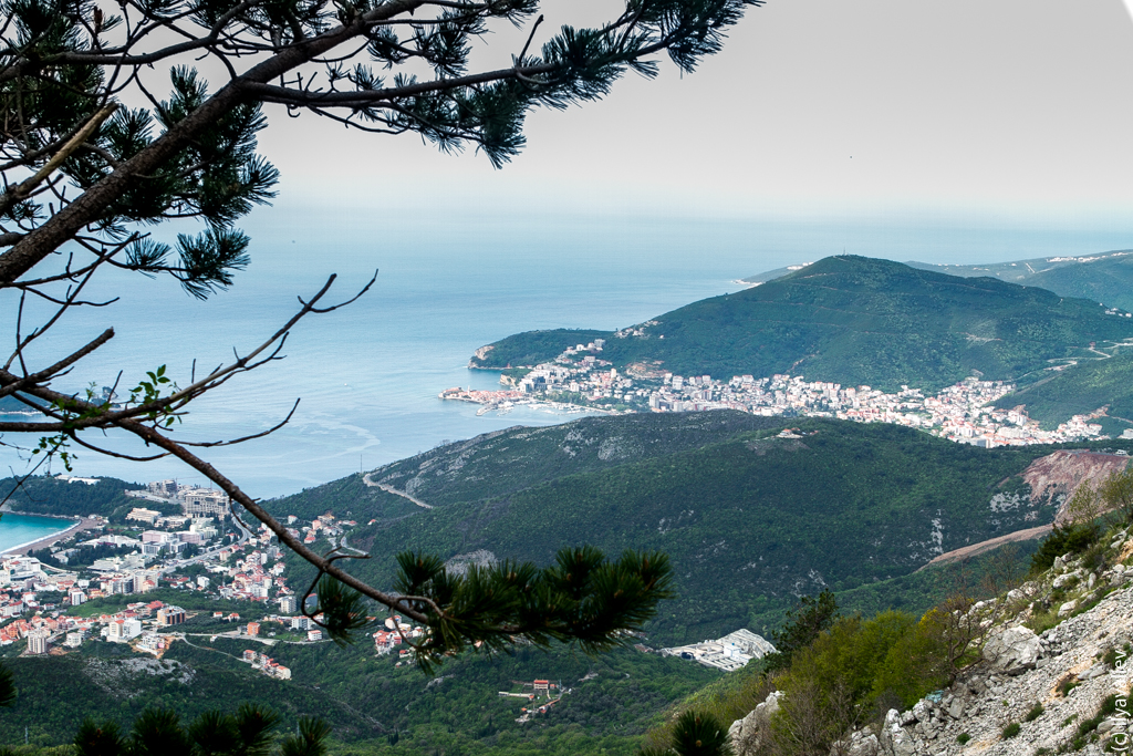 Tui montenegro-2770.jpg