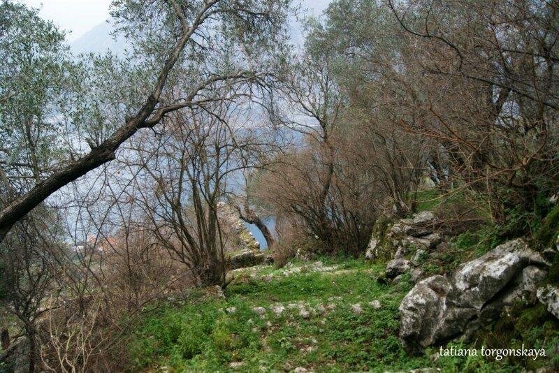 Дорога к церкви Св.Ильи